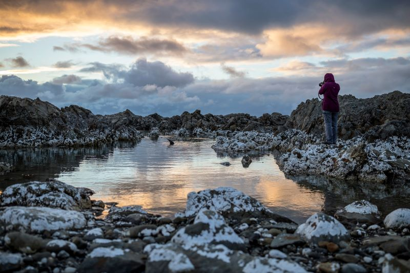 Christchurch to Kaikoura Rocky Landscapes Photo By Miles Holden