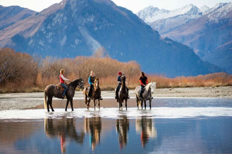Christchurch to Arthur's Pass Horse Trekking Adventures